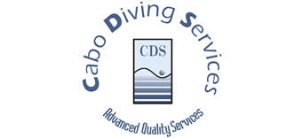 Cabo Diving Services